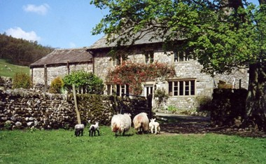 Redmire Farm